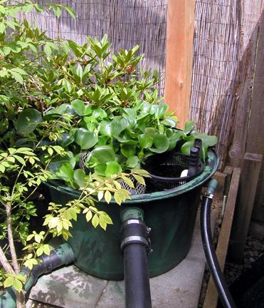 My japanese garden technical information for Pond veggie filter
